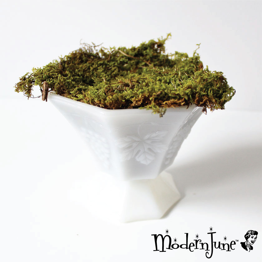 2.-Layer-Moss-to-Milk-Glass