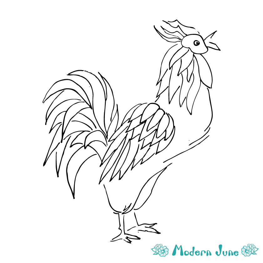 Line-Drawing-Rooster-by-Modern-June-Art