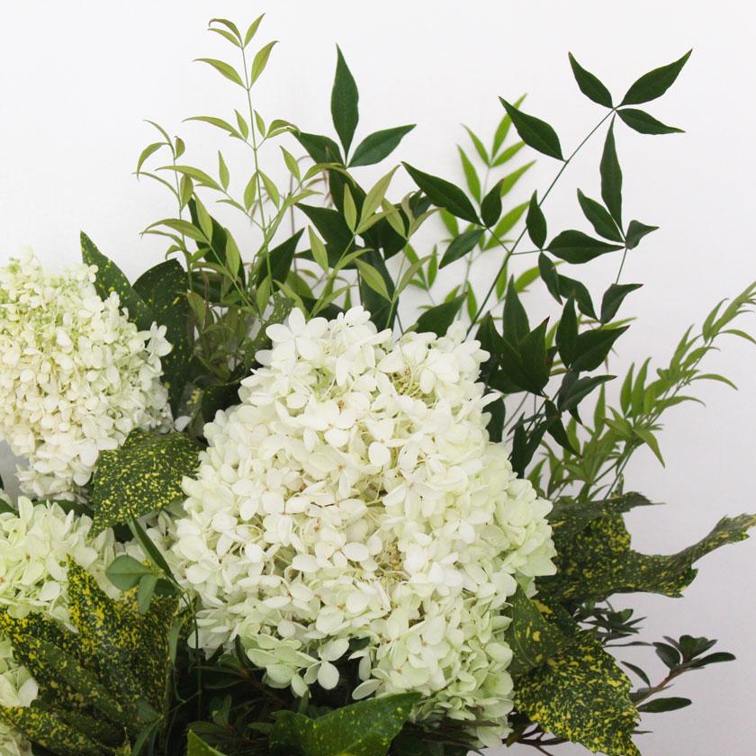 nandina-and-hydrangea