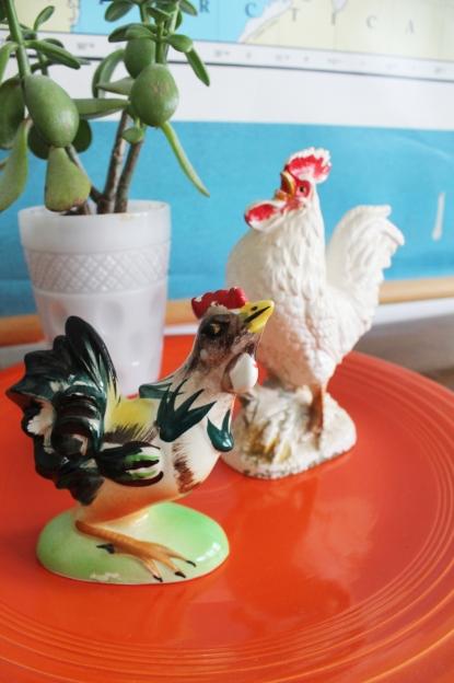 Roosters Modern June