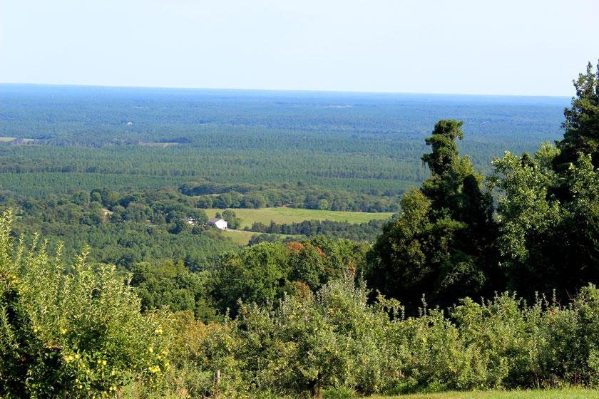 carter-mountain-view