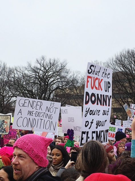 womans-march-signs